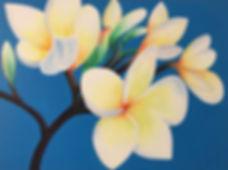 frangipani.jpg