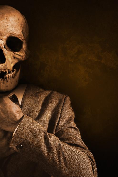 Ce crâne avait une langue et jadis pouvait parler/ Vincent VARENE