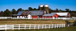 Jamestown Farm