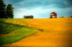 Grain In Time