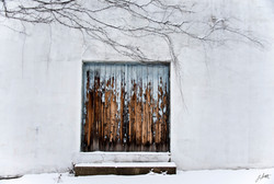 Day64_The Old Door with Vines_March5