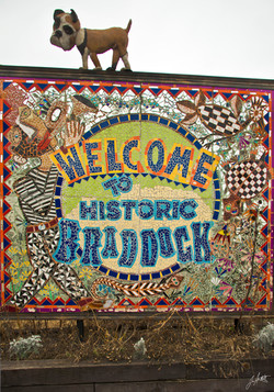 Day347_Braddock Bulldock_December13