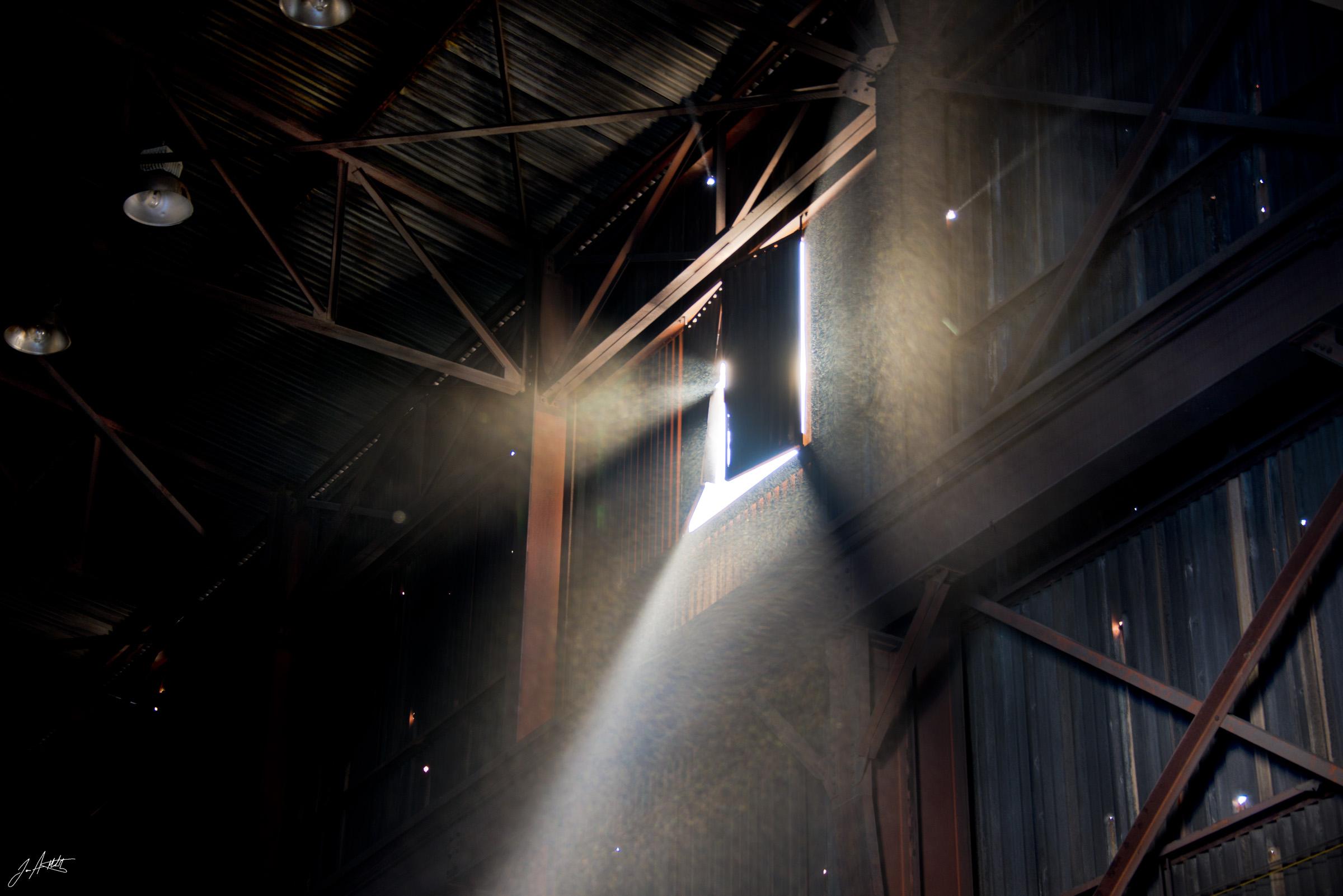 Day48_LightOfDay_February17