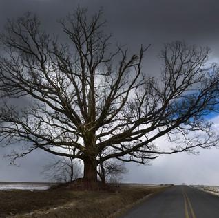 Mercy+County+Road1b.jpg