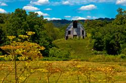 Lonely Barn - Washington County