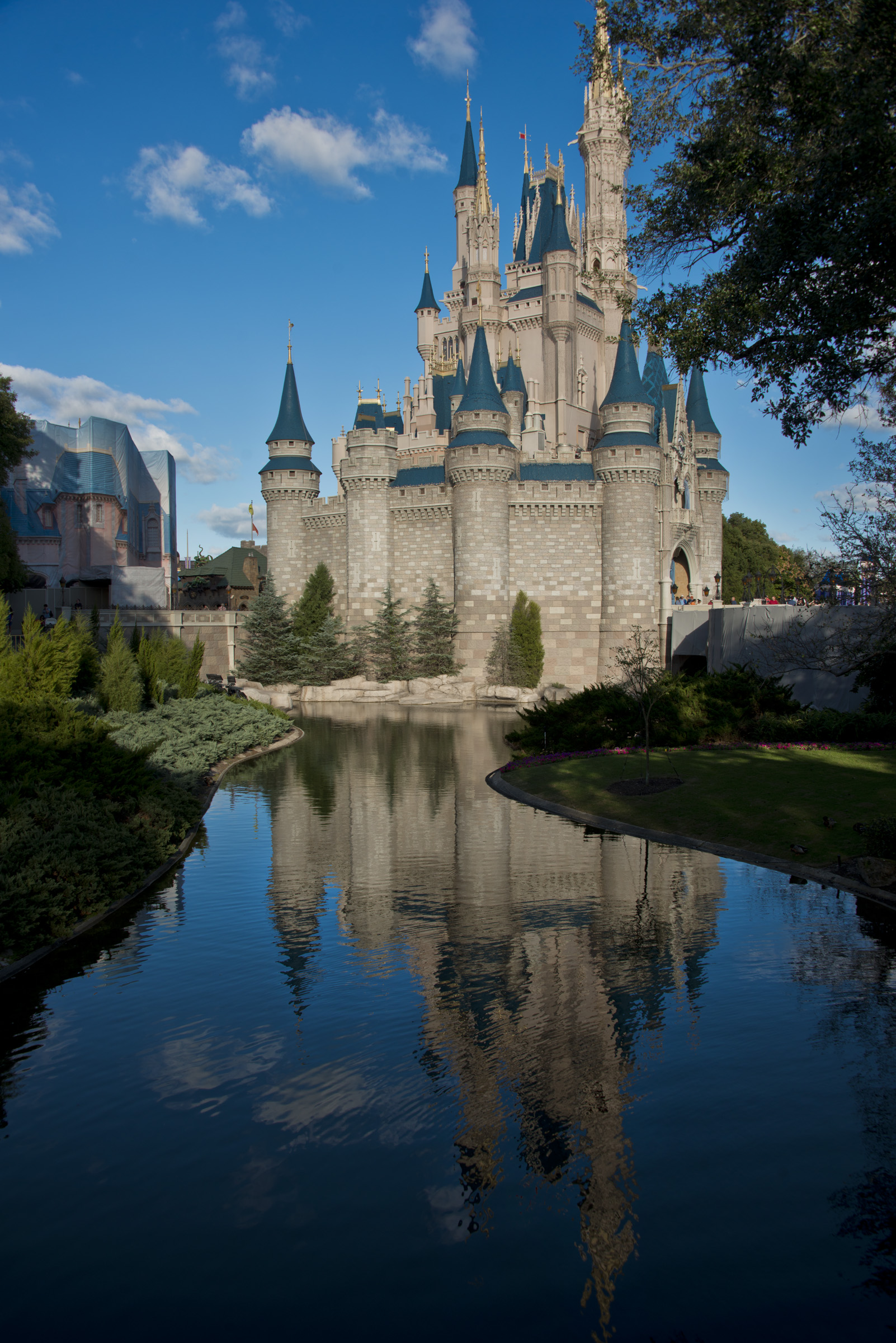 Disney Reflections