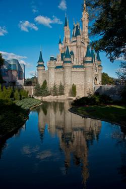 Disney Reflections