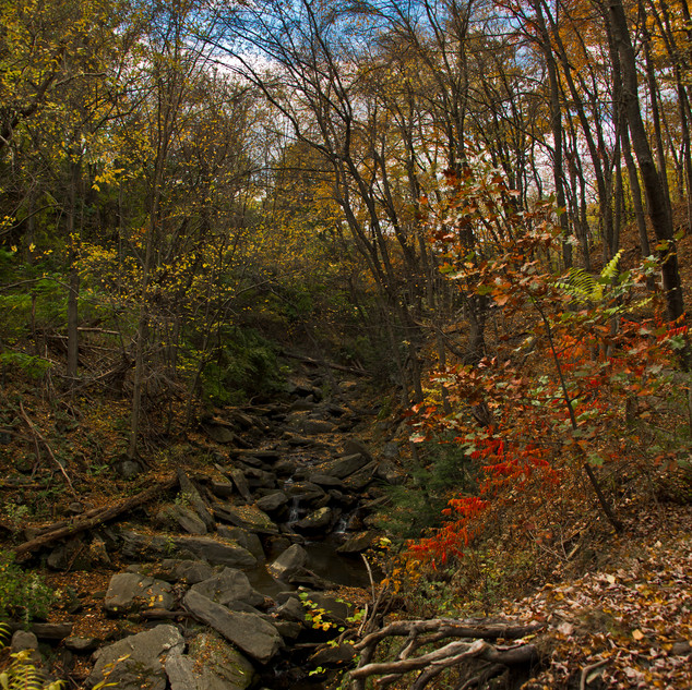 Day293_StoneyRiver_October20small.jpg