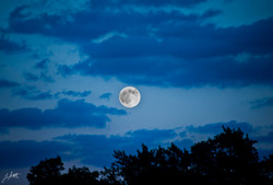 Day 212_BlueMoon_July31