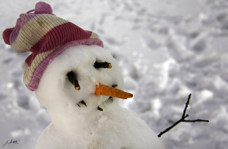 Day 31_Snowman Portrait_Jan 31 signed small.jpg