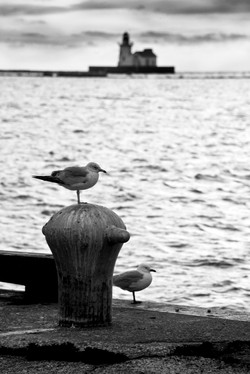 Lake Erie - Cleveland