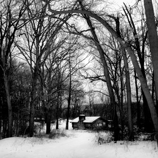 DAY 32_CABIN IN THE WOODS_FEB 1 small.jp
