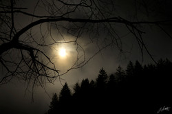 Day 56_Dark skys_Feb25.jpg