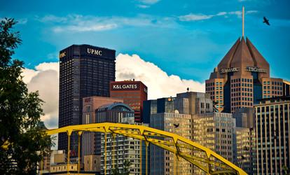 9 Bird and Bridge city view