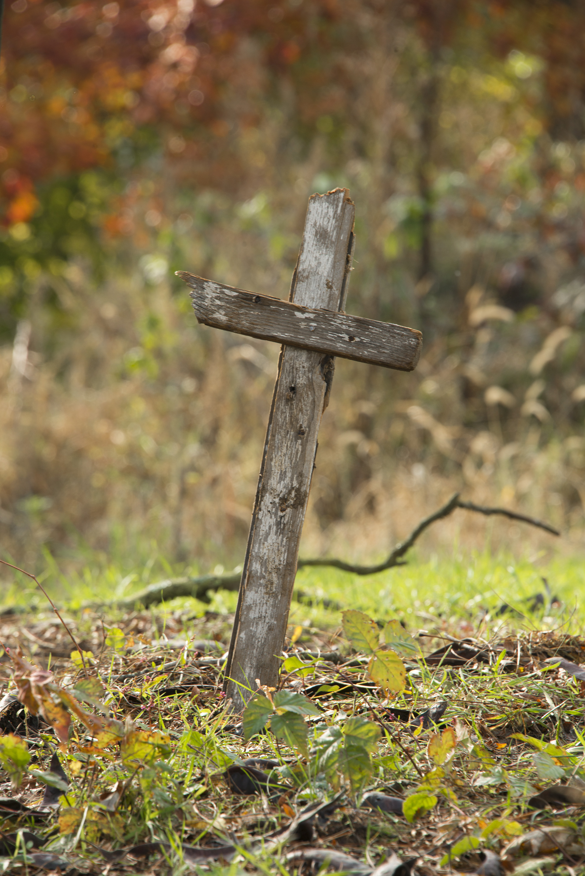 The Wooden Cross