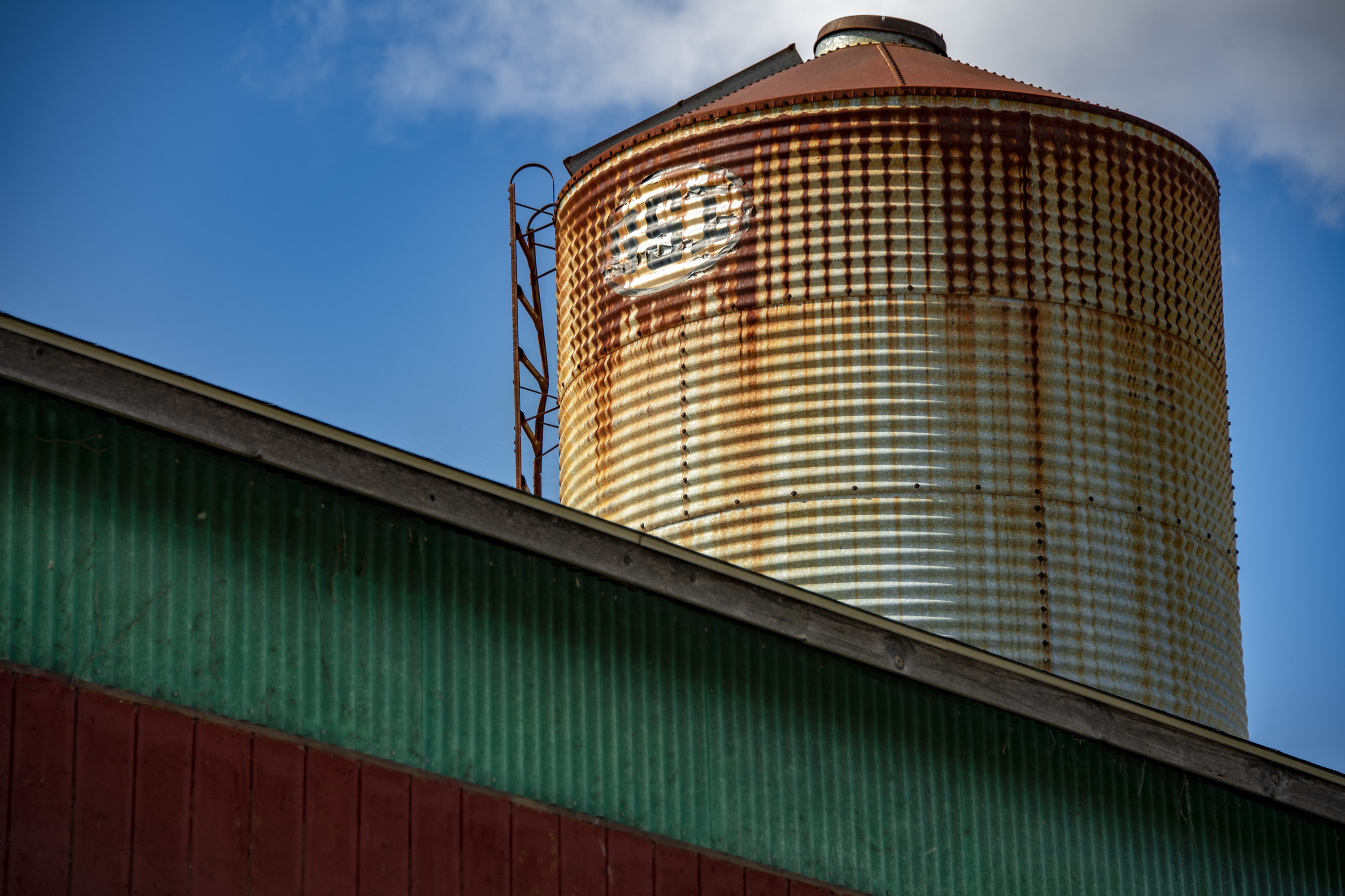 Silo When I was young_small