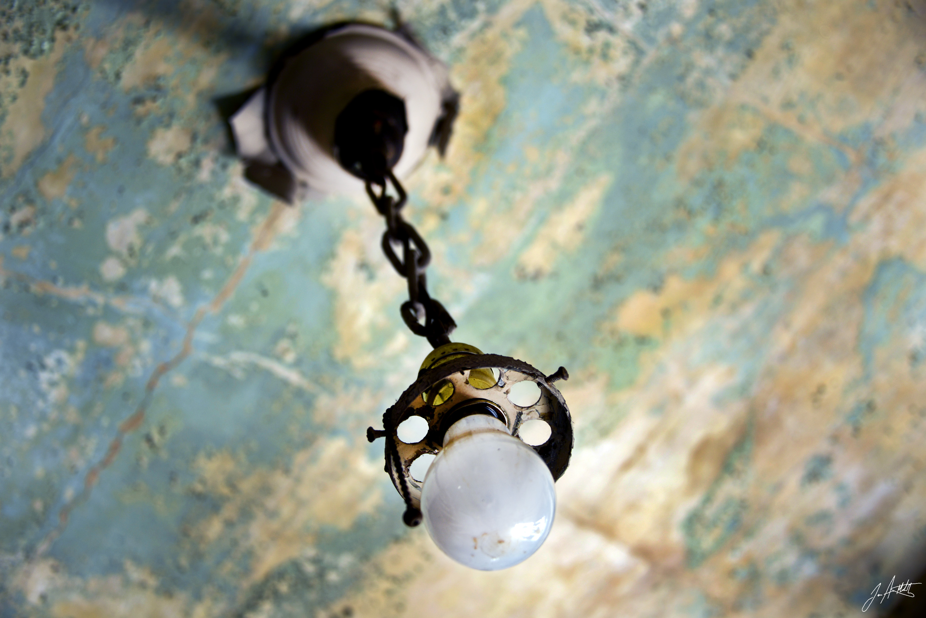 Day 73_abandoned Bulb_March14.jpg
