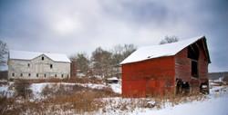 Day58_Maggie's Farm_February27