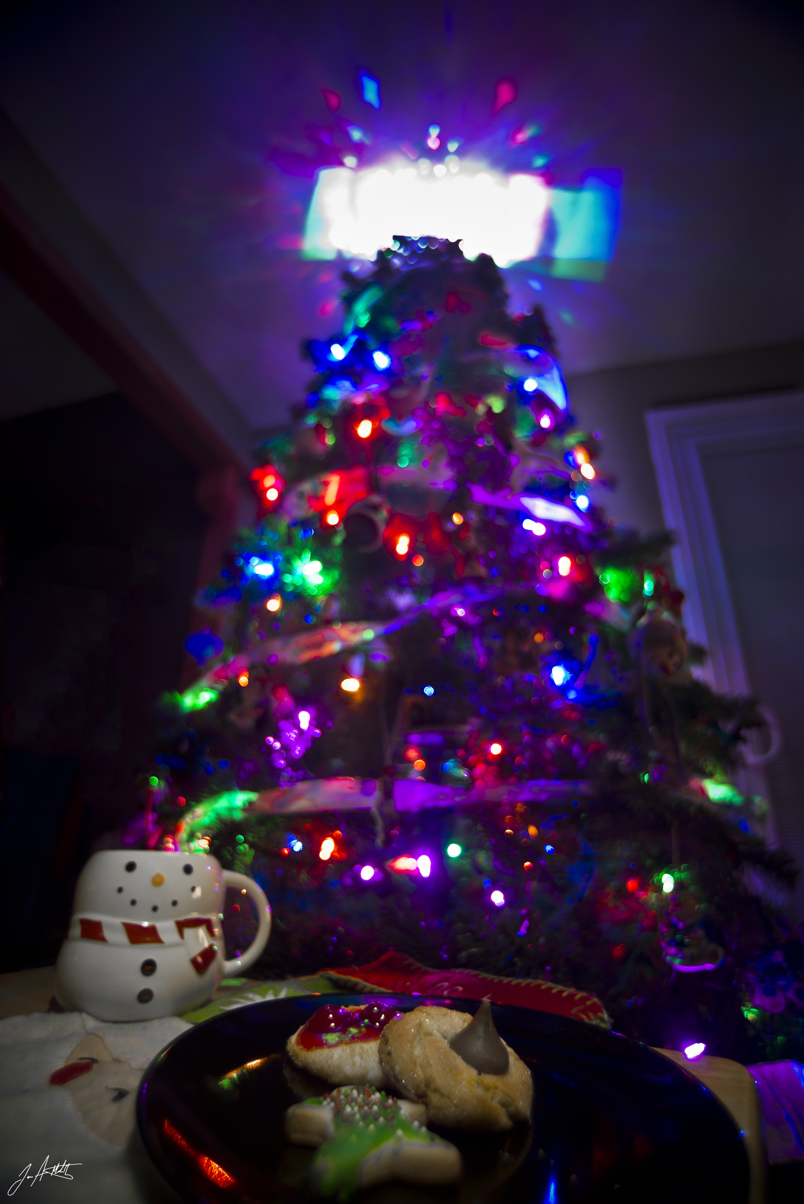 Day358_Cookies for Santa_December24