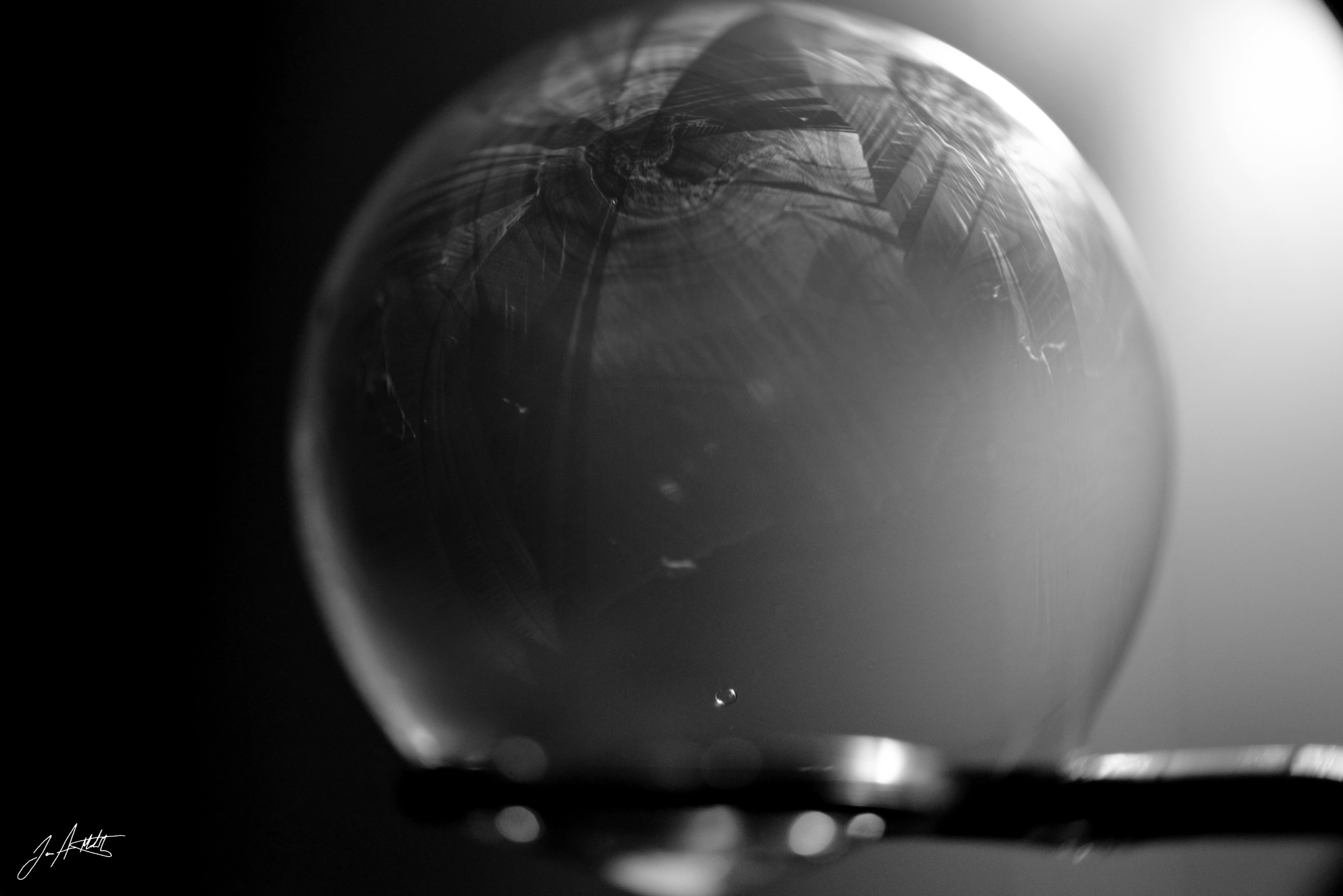 Day 28_Black and White Bubble_Jan 28 small.jpg