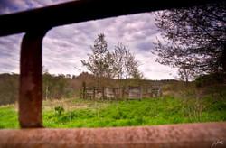 Day124_Abandoned Farm_May4