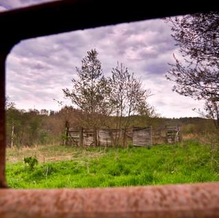 Day124_Abandoned Farm_May4small.jpg