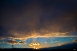 Day30_Waterloo Sunset_January 30