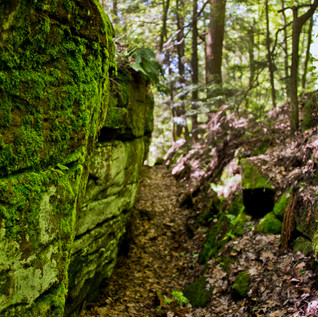 Day150_A rocky path_May30 small.jpg