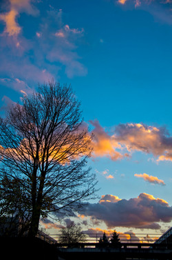 Day319_Sunset Bridge_November15