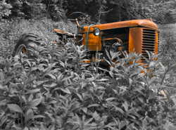 Day161_Tractor_June10