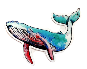 Humpback Whale Sticker.png