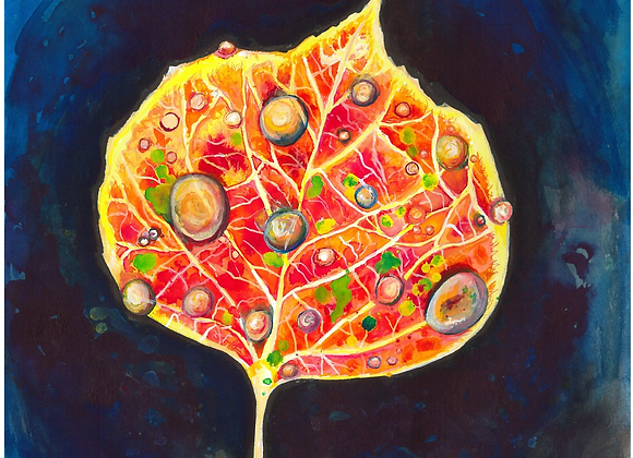 Aspen Leaf in the Fall