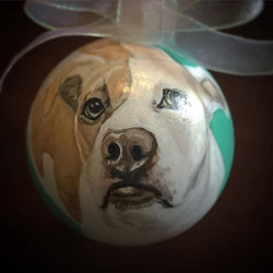 CustomPetOrnaments  #d