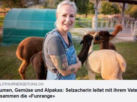 Bericht in der Solothurnerzeitung