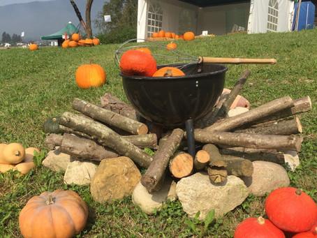 Für die Herbstküche