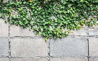 Is Precast Concrete Environmentally Friendly?