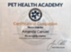 First aid cpr certificate.jpg