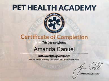First aid cpr certificate.jpg