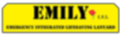 EMILY logo_01 2 456.png