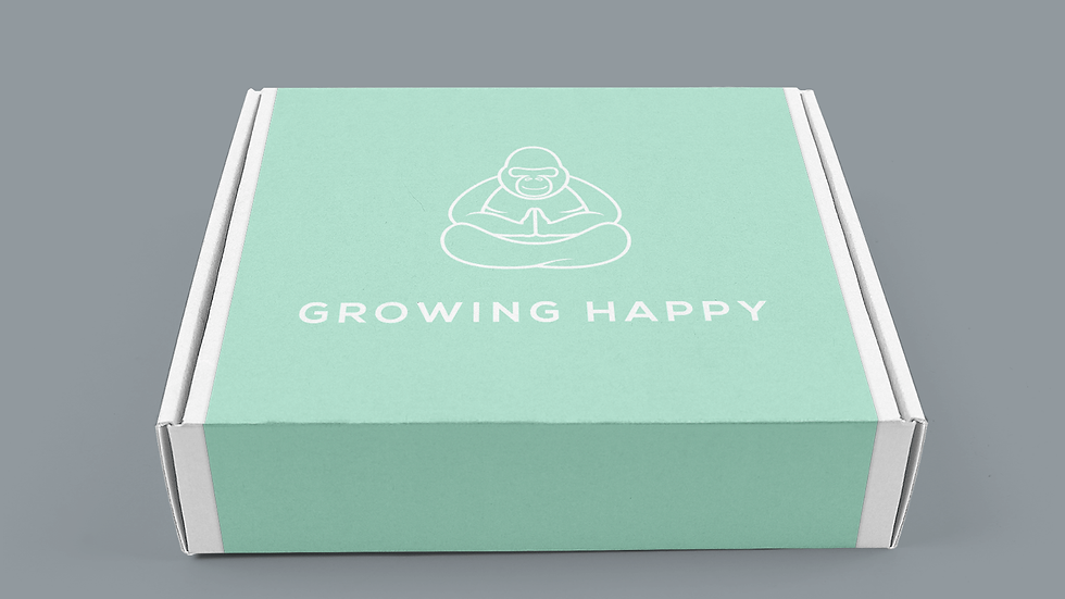 1 x Original Growth Box