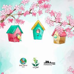 Birdhouse Flyer-03.png