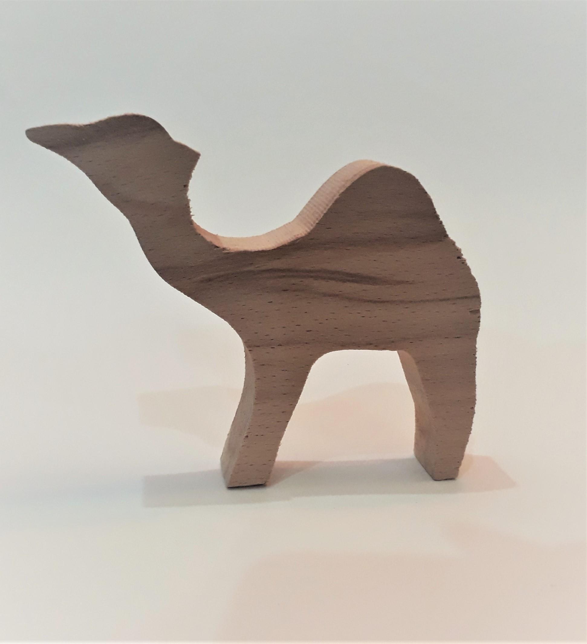 Camel AB.jpg