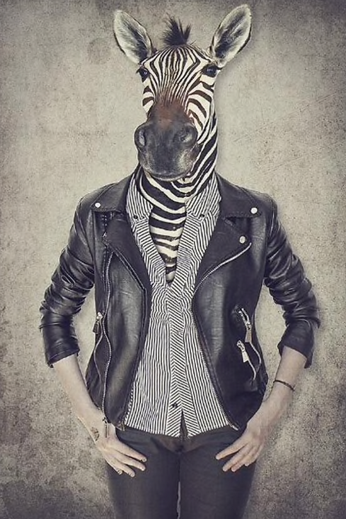 Gertrud Zebra Canvas Poster