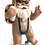 Beach Gnome Emil
