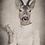 Thumbnail: Astrid Antelope Canvas Poster