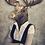 Thumbnail: Moose Maude Poster On Canvas