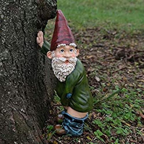 Nasty Gnome Dimble