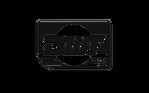 DWT Racing_675x420_Logo.png