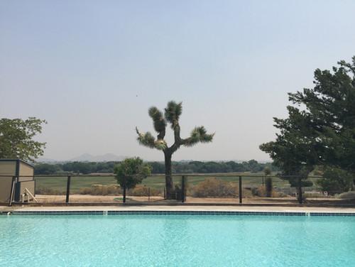Ranch Pool Joshua Tree.JPG