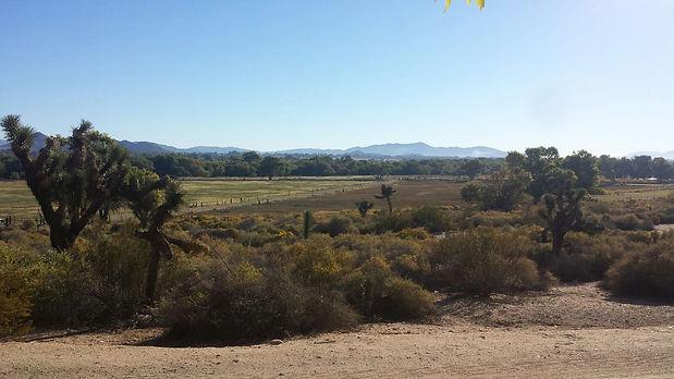Ranch View 1.JPG